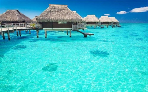 kurban- bayraminda-maldivler